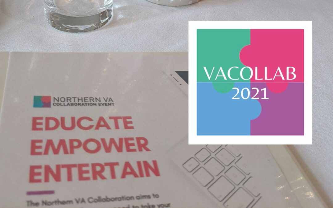 Finding Our Voice, Vision & Values at VACollab2021